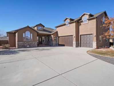 727 Centauri Court, Grand Junction, CO 81506 - #: 20186574