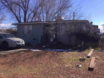 1255 Bunting Avenue, Grand Junction, CO 81501 - #: 20190369