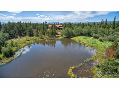 2200 County Road 103, Nederland, CO 80466 - #: 858046
