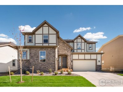 1219 Sandstone Cir, Erie, CO 80516 - #: 890325