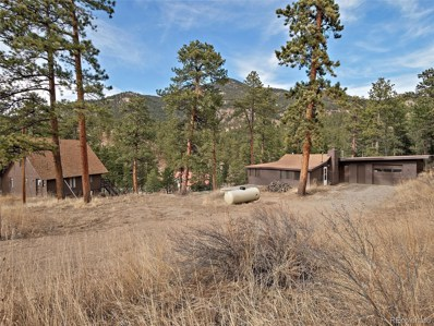 41 And 45 Diamond Drive Drive, Evergreen, CO 80439 - #: 1625282