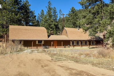 11243 Twin Spruce Road, Golden, CO 80403 - #: 1711229