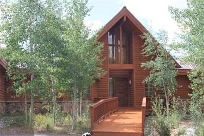 7 Rodeo Drive, Leadville, CO 80461 - #: 1738964