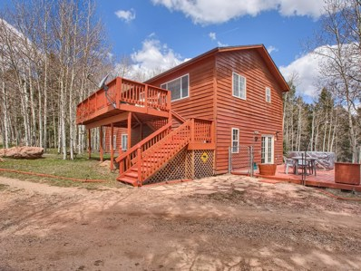 946 Jolly Rogue Drive, Divide, CO 80814 - #: 1833573
