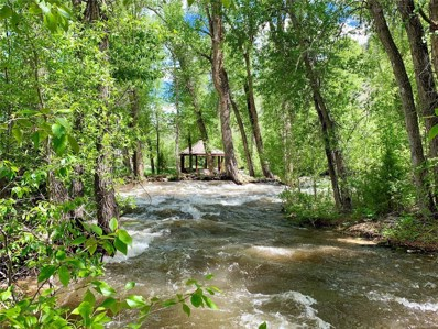 17300 Willow Tree Drive, Maysville, CO 81201 - #: 2766106
