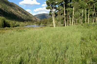 0 Silver Valley Road Road, Silver Plume, CO 80476 - #: 3304540