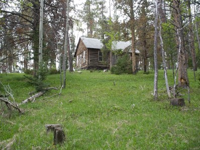 3 Highway 127, Walden, CO 80480 - #: 3496905
