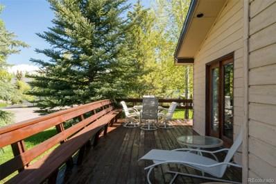 1424 Robert E Lee Lane, Steamboat Springs, CO 80487 - #: 3514157