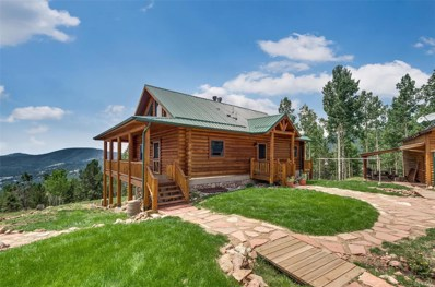 6837 County Road 8, Cripple Creek, CO 80813 - #: 3901894