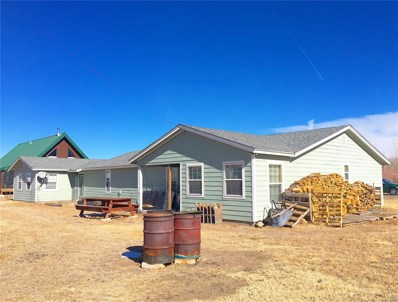 181 Navajo Road, South Fork, CO 81154 - #: 4262620