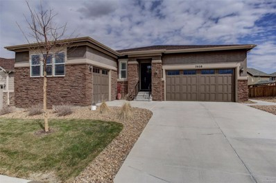 7028 Thundercloud Court, Castle Rock, CO 80108 - #: 4697278