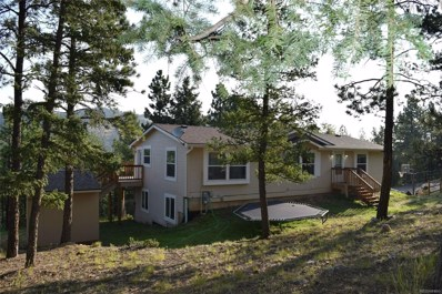 412 Lo Meadow Lane, Bailey, CO 80421 - #: 5245650