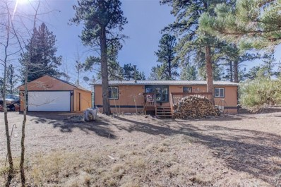 102 El Lobo Lane, Bailey, CO 80421 - #: 5301929