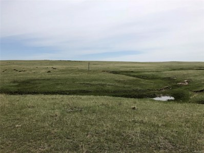 36533 County Road 153, Agate, CO 80101 - #: 5928186