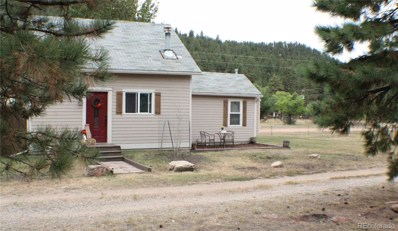 16685 County Road 126, Pine, CO 80470 - #: 5929107