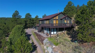 307 Sun Way, Bailey, CO 80421 - #: 6073928
