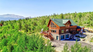 145 Beaver Ridge Court, Fairplay, CO 80440 - #: 6135180