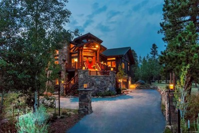 699 Findley Court, Estes Park, CO 80517 - #: 6376553