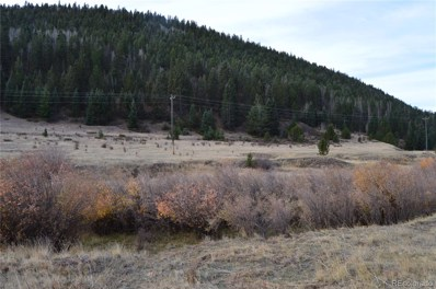 2nd Street, Victor, CO 80860 - #: 7104315