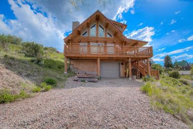 14 Fishermans Drive, Silverthorne, CO 80498 - #: 7231913