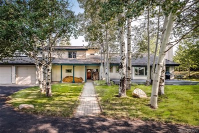 880 Spring Hill Road, Steamboat Springs, CO 80487 - #: 7539619