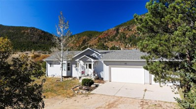 151 Colorado Springs Circle, Palmer Lake, CO 80133 - #: 7677590
