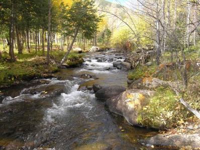 19051 Monarch River Drive, Salida, CO 81201 - #: 7767501