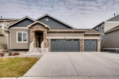 767 Tailings Drive, Monument, CO 80132 - #: 7774919