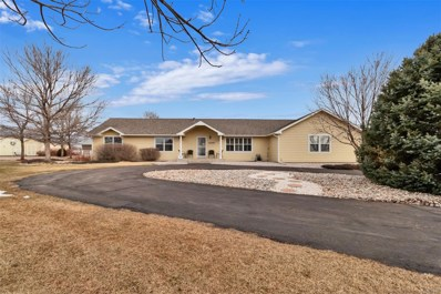 9299 E 157th Avenue, Brighton, CO 80602 - #: 7965993