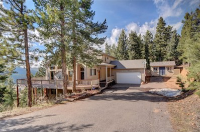 27324 Arrowhead Lane, Conifer, CO 80433 - #: 8135491