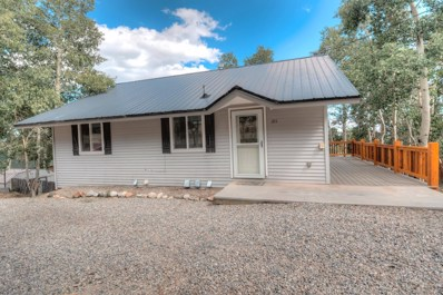 315 2nd Street, Fairplay, CO 80440 - #: 8345945