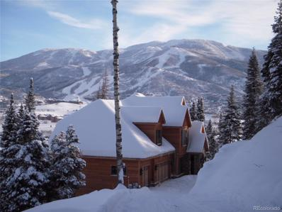 36889 Tree Haus Drive, Steamboat Springs, CO 80487 - #: 8458923