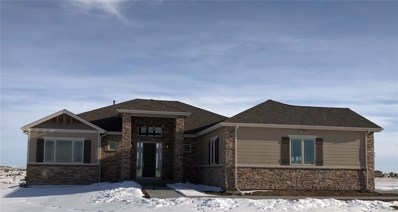 2372 Antelope Ridge Trail, Parker, CO 80138 - #: 8492149