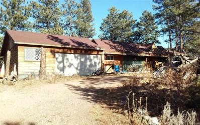 30573 Blue Mountain Road, Golden, CO 80403 - #: 8690525