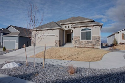 8420 Wayne Court, Colorado Springs, CO 80924 - #: 8809060