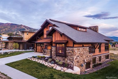 995 Angels View Way, Steamboat Springs, CO 80487 - #: 9016140