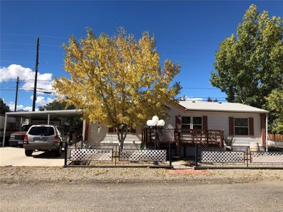506 Scott Street, Salida, CO 81201 - #: 9222504