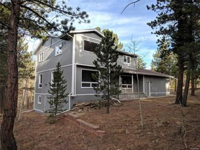 358 Aspen Lane, Black Hawk, CO 80422 - #: 9920338