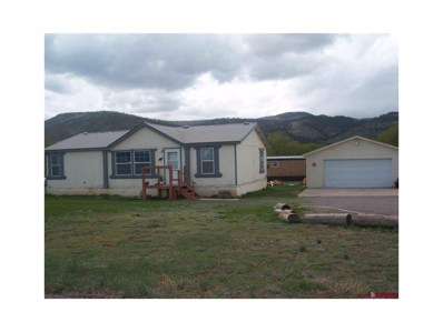 100 Toquima Street, South Fork, CO 81154 - #: R701299