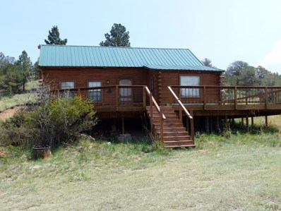 307 Stephens Dr, Westcliffe, CO 81252 - #: 175429