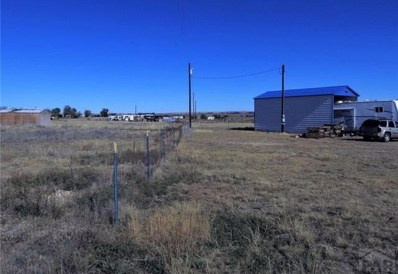 1025 S Dodge Rd, Hasty, CO 81044 - #: 184614
