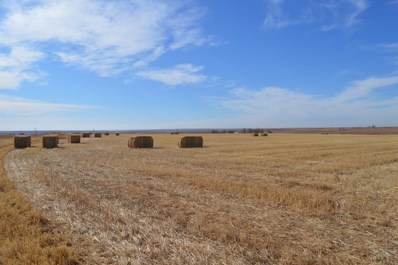 31501 County Rd Jj, McClave, CO 81057 - #: 185320