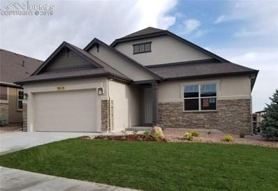 4614 Portillo Place, Colorado Springs, CO 89024 - #: 1181119
