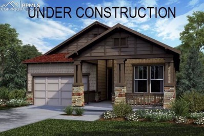 4210 Forever Circle, Castle Rock, CO 80109 - #: 1229600