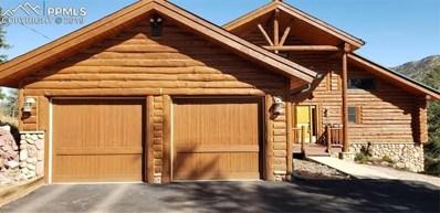 9110 Mountain Road, Cascade, CO 80809 - #: 1548896