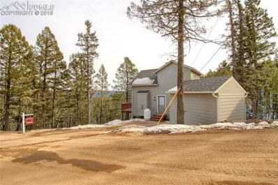 438 Potlatch Trail, Woodland Park, CO 80863 - #: 2217174