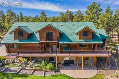 17522 Abert Ridge View, Colorado Springs, CO 80908 - #: 2354635