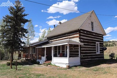 40230 Highway 24 Highway, Lake George, CO 80827 - #: 2418573