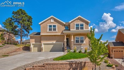 19733 Serenity Springs Point, Monument, CO 80913 - #: 2978021
