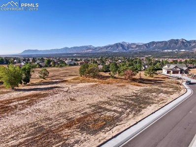 14359 Spyglass Hill Place, Colorado Springs, CO 80921 - #: 3922933